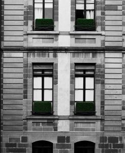 Geneva window boxes